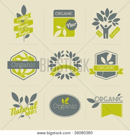 Organic Retro Labels, Badges And Other Design Elements With Leaves. Vector Illustration.