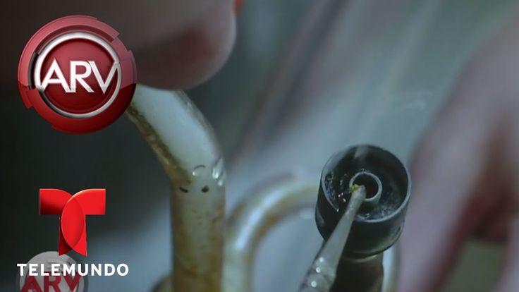 Alerta por peligro al hacer aceite de marihuana casero | Al Rojo Vivo | ...