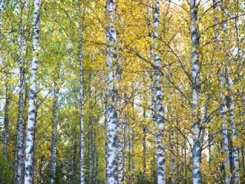 Sibelius - Karelia Suite