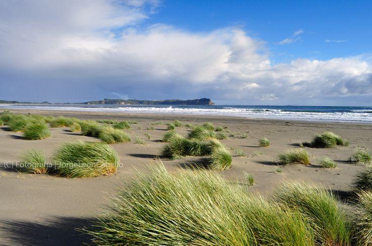 https://flic.kr/p/9Nsgpn | Playa Pangal - Maullin (Patagonia - Chile) |  | Buy this photo on Getty Images |  ***************************************************  Maullin se ubica a 57 kilómetros al este de Puerto Montt, en la Provincia de Llanquihue, Region de los Lagos. Este pequeño poblado situado a orillas del Río homónimo, posee atractivos naturales como la playa Pangal, Puerto Godoy, Quillagua y los Humedales del Rio Maullin.  Pangal es la playa principal y queda al suroeste de Maullin…