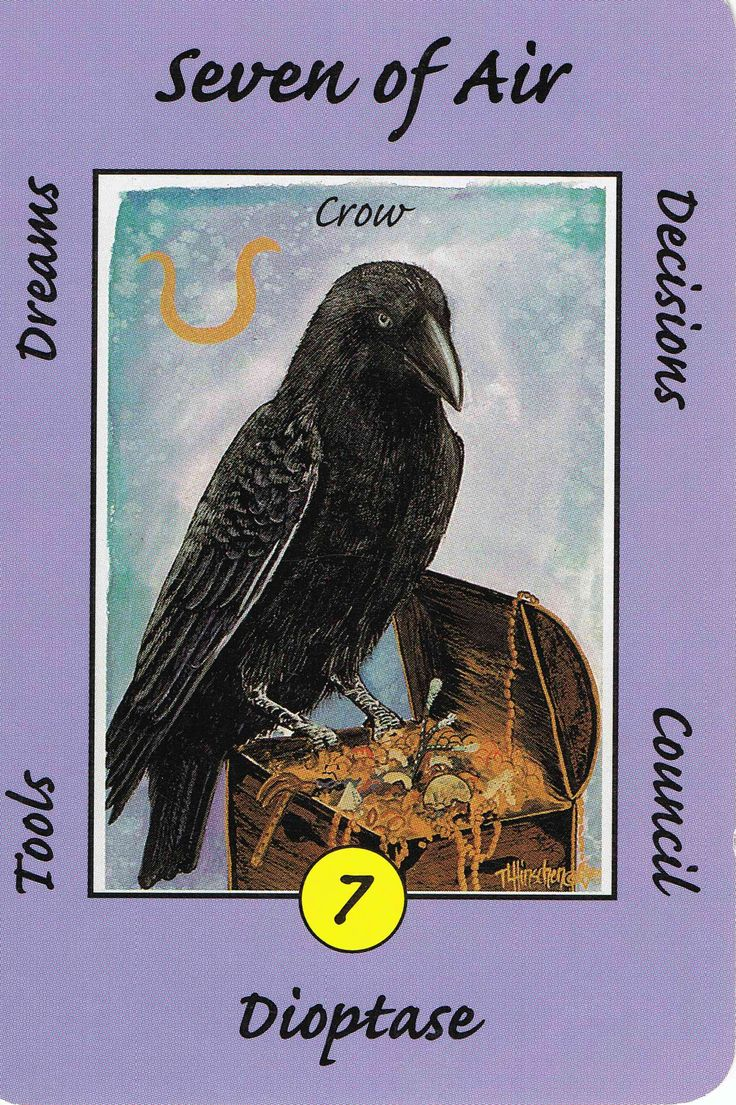 7. Air (Crow) Australian Animal Tarot. You have the tools and you know how to use them, keep working towards your dream.