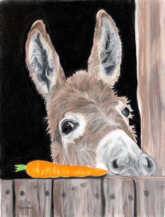 Donkey Art Print, Carrot Art, Donkey Decor – Fine Art Giclee Print of an Original Pawstel