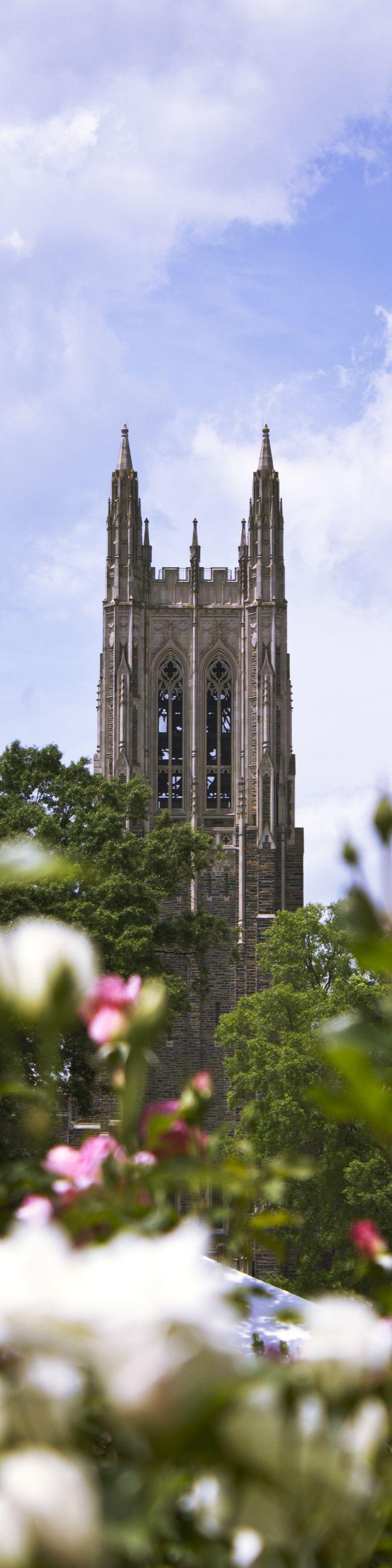 39 best pictureduke images on pinterest duke university
