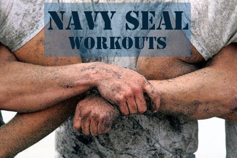 Best 25+ Navy seal workout ideas on Pinterest