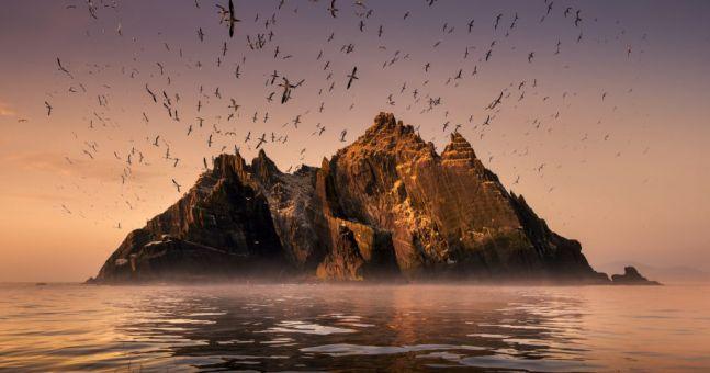 Wild Ireland Beats Planet Earth 2 for Prestigious Documentary Award #Wild  #Ireland  Beats #Planet  #Earth  2 for #Prestigious #Documentary #Award http://outsider.ie/latest/wild-ireland. @wildatlanticway #Ireland #coast #documentary