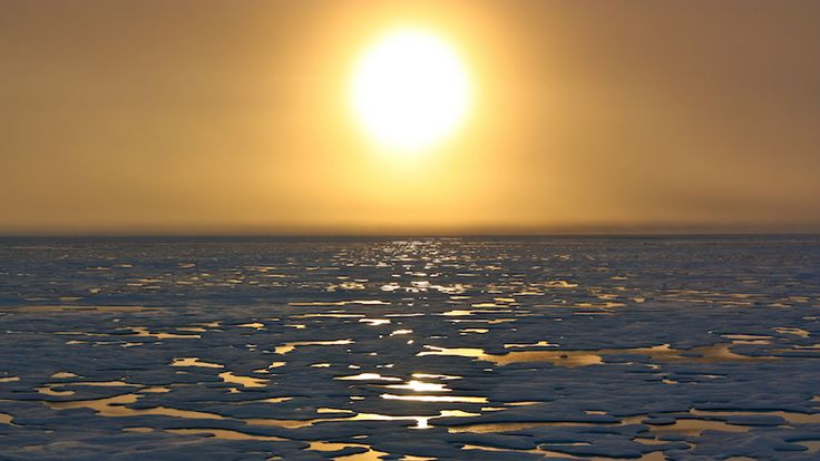 Polar sea ice hits record new low  Northern spring thaw begins with sea ice at a record low. Nasa scientists say the world has lost an expanse of ice larger than Mexico since 1981