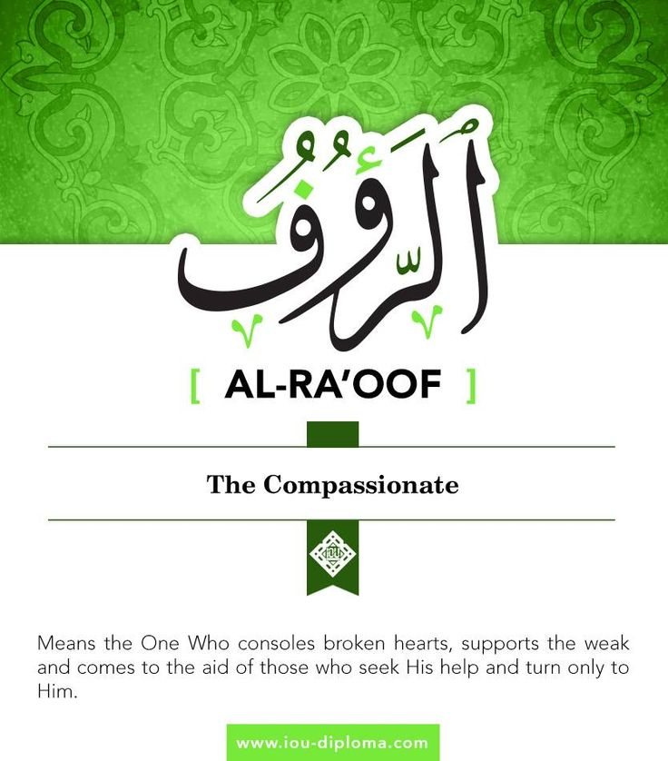 """Al-Ra'oof means the One Who consoles broken hearts, supports the weak and comes to the aid of those who seek His help and turn only to Him. This attribute requires humans to be merciful to their fellow humans and even to animals, as the Prophet (pbuh) said, """"Whoever is not merciful will not receive mercy."""" Furthermore, he narrated to us the story of a prostitute who was forgiven her sins and put in paradise for graciously going out of her way to provide water for a dog dying of thirst."""
