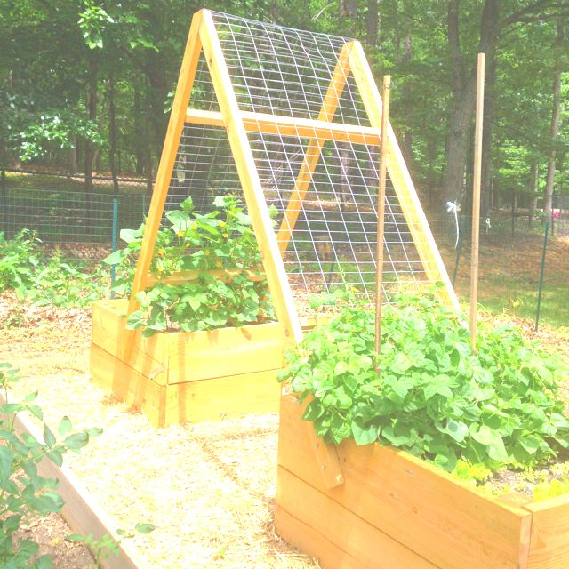 Garden Boxes With Trellis // Nice Way To Make Reaching Those Cucumbers  Easier. Would