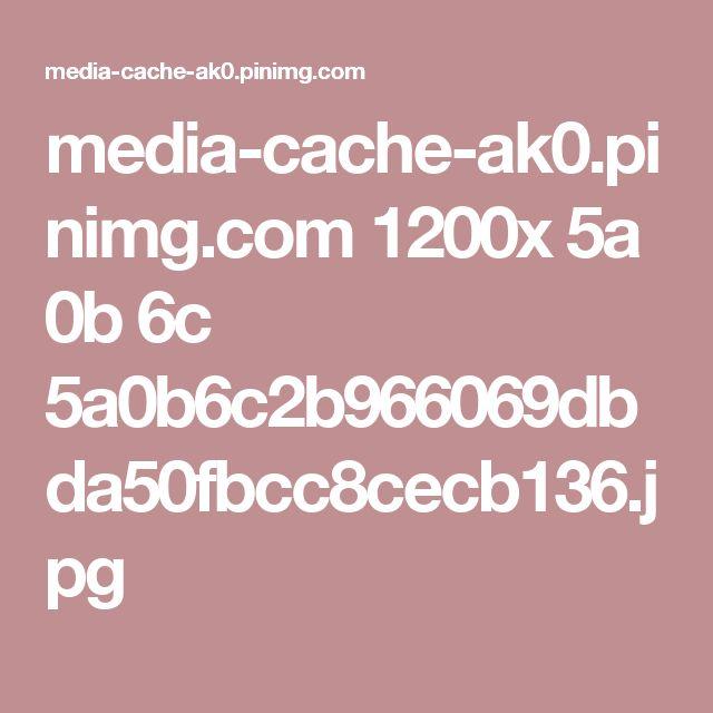 media-cache-ak0.pinimg.com 1200x 5a 0b 6c 5a0b6c2b966069dbda50fbcc8cecb136.jpg