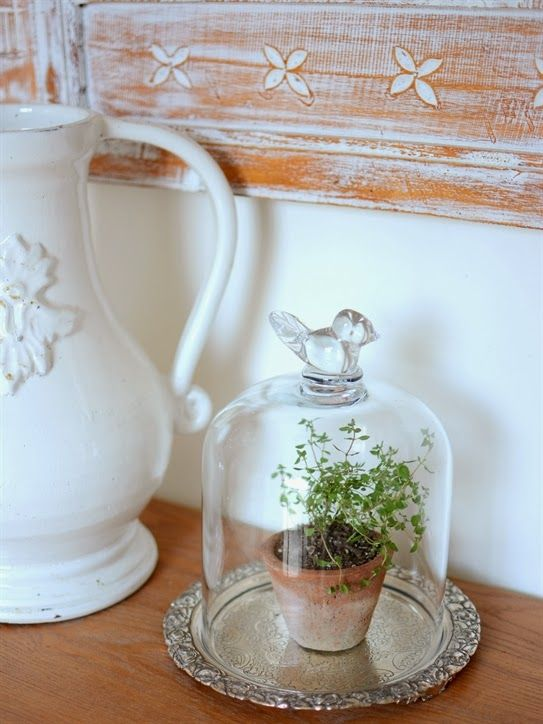 Glass cloche styling ideas glass jar and bell jars for Bell jar ideas