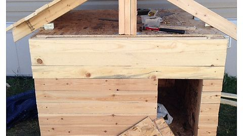 Building A Heated And Insulated Dog House With Household Tools