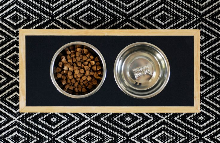 Best 25 Pet Feeder Ideas On Pinterest Raised Dog Feeder