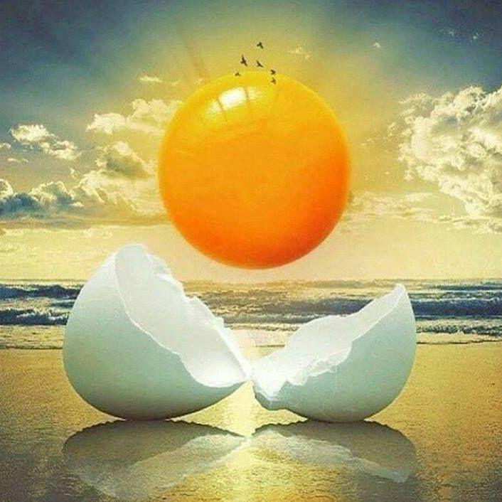""""""" Um dia de chuva é tão belo como um dia de sol. Ambos existem; cada um como é. """" Fernando Pessoa @OlhardeMahel #FernandoPessoa #pensamentododia #reflexao #ilustração #ilustradores #ensolarado #nublado #diadesol #diadechuva #sol #luz #iluminado #olhardemahel #fpolhares #rainydays #sunnydays #rain #sun #light #thinking #thinkabout #illustration #illustrator http://ift.tt/2r5bSmV"""