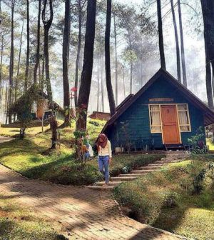 Serunya Berwisata Di Tengah Hutan Dengan Ragam Wahana Menarik Di Terminal Wisata Grafika Cikole