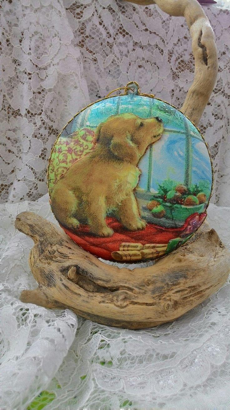 Med. Cucciolo di Labrador