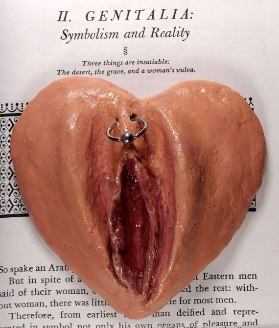Vulva with pierced hood.  MJ    https://www.facebook.com/RamblingsofaFemmeDomme