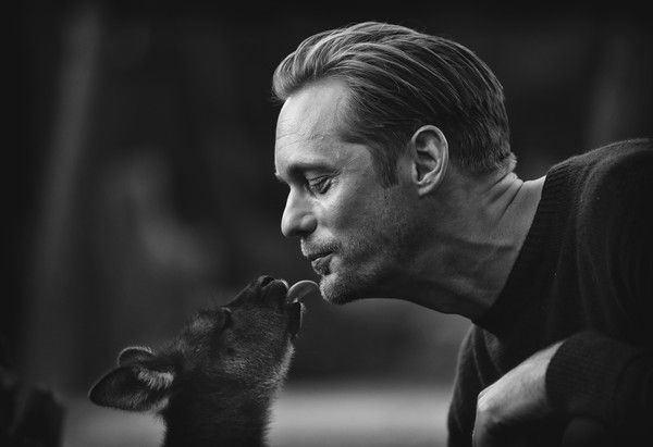 This digital image has been converted to black and white) Actor Alexander Skarsgard kisses a baby Kangaroo during the Legend of Tarzan Photo Call at WILD LIFE Sydney Zoo on June 14, 2016 in Sydney, Australia.