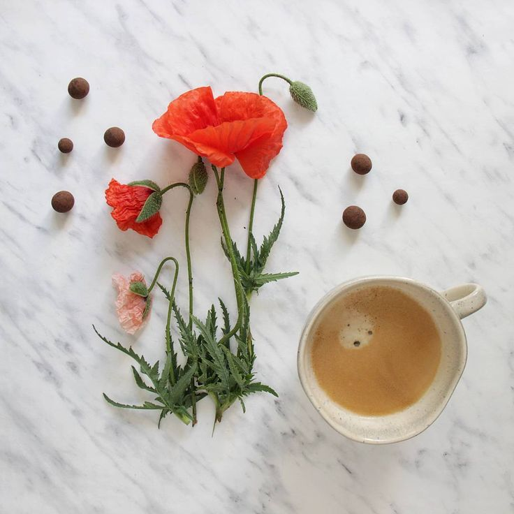 Uprseny den, kafco nutne ☔☕ rainy day needs more coffee ☕☔ • •• ••• #coffee#coffeegram#coffeelovers#coffeetime#coffeetimecz#coffeeandseasons#momentsofmine#hello#bonjour#papaver#coquelicot#softones_perfection#stilllife_perfection#still_life_gallery#pocket_creative#goodvibesonly#igers#igersdaily#theartofslowliving#feelfreefeed#instagood