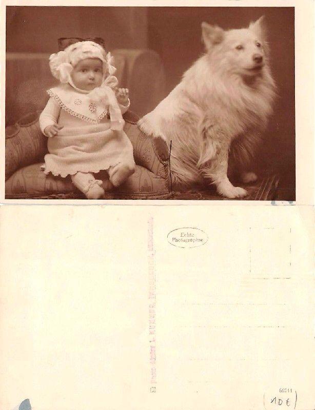 http://www.ebay.ch/itm/Seltene-Fotokarte-Deutscher-Spitz-u-Baby-/390795079572?pt=Ansichtskarte_Zubehör&hash=item5afd33af94