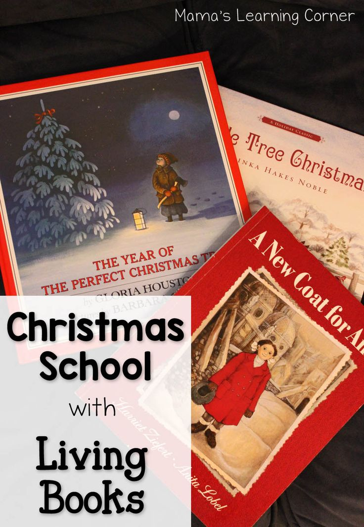 Take a look at 7 of our favorite Christmas Books! These living books are sure to be memory makers with you and your children!