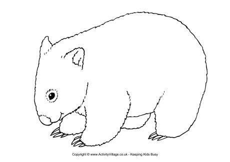 Wombat printables wombat colouring page wombats for Australian animal coloring pages
