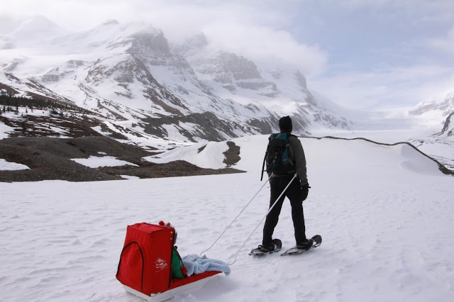 36 best images about How to Buy Snowshoes on Pinterest ...