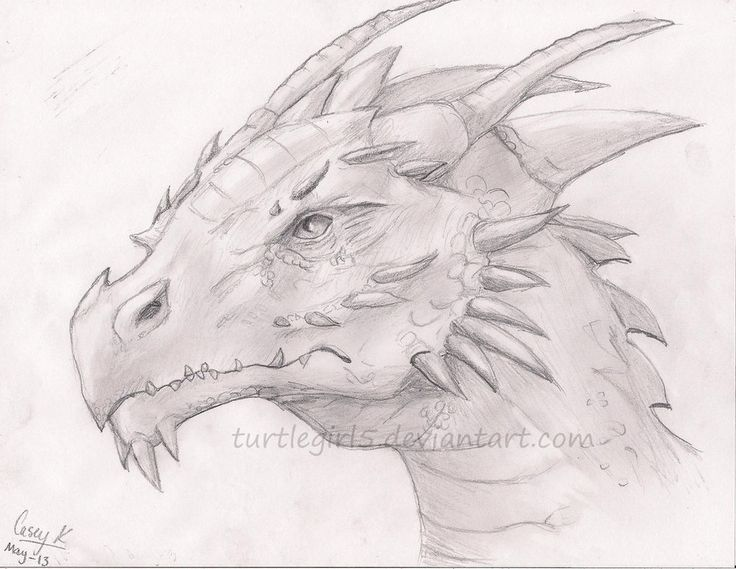 20 best Dragons images on Pinterest | Mythological ... Drawings Of Dragons Realistic