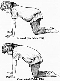 1000 images about positions for birth
