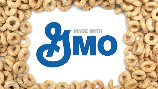 General Mills surrenders to GMO labeling, reluctantly decides to label foods but still believes in fundamentally deceiving its own customers