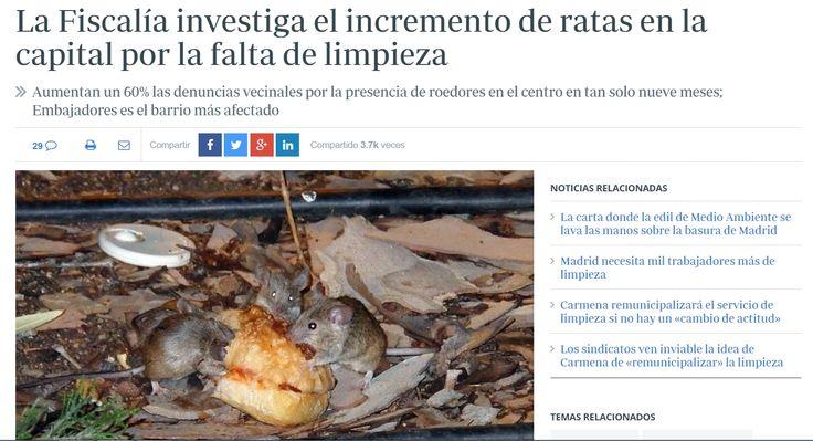 El Ayuntamiento no habla de plaga de roedores, pero confirma que se han incrementado los avisos por presencia de ratas y ratones en Madrid, sobre todo en la zona centro. Las denuncias vecinales ascienden a medio centenar en los barrios de Embajadores, Justicia, Palacio y Sol en lo que va de año, lo que supone un 60% por ciento más que las registradas en estas mismas zonas en todo 2014 (30), según informa el delegado de Salud, Seguridad y Emergencias - ABC 24/9/2015