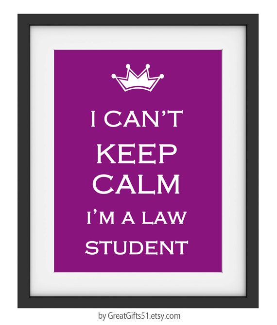 40% OFF CYBER SALE I Cant Keep Calm I'm a Law Student Gift Law ...