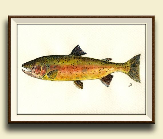 PRINT- Trout art wall - Rainbow trout fish - fly fishing game fishing river - Art Print by Juan Bosco