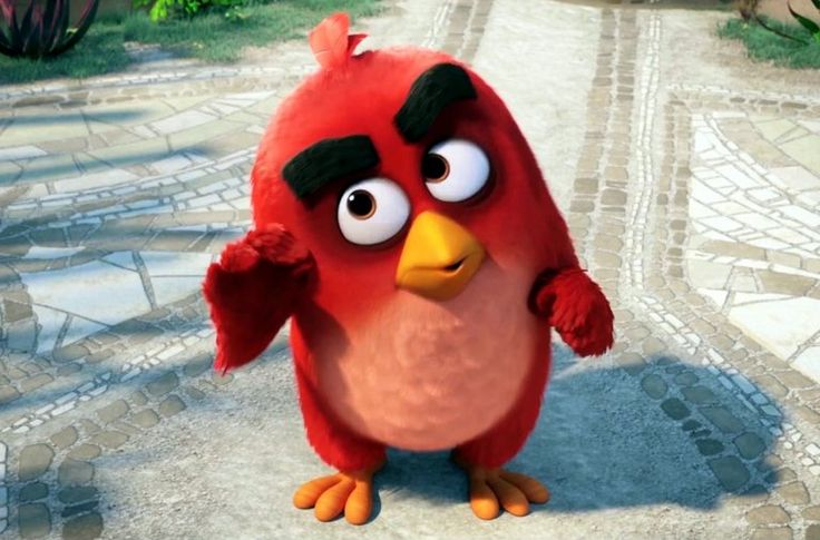 In the 3D animated comedy, The Angry Birds Movie, we'll finally find out why the birds are so angry.The movie takes us to an island populated entirely by happy, flightless birds – or almost entirely. In this paradise, Red (Jason Sudeikis, We're