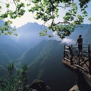 Madeira Islands, Portugal: Portugal Timber, Mountain, Beautiful View, The View, Deep Breath, Islands, Places, Natural, Photo