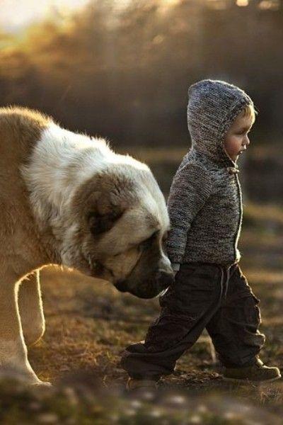 Little boy, big dog. http://sojos.com