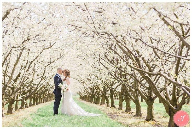 Bride & Groom Wedding Portraits | Cherry Blossom Wedding Photos | A Magical Spring Blossom Wedding at Pillar and Post | Niagara-on-the-Lake | Niagara Weddings | © 2016 Samantha Ong Photography