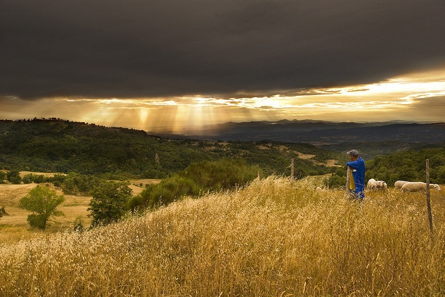 Here comes the sun >>Tuscany, Italy by Thomas Cook Belgium, via Flickr (Johan Ensing)