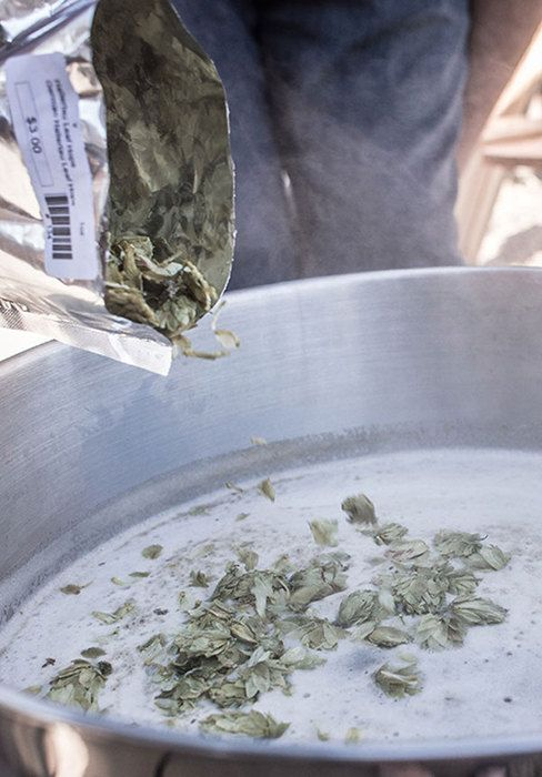 Discover the history of first wort hopping and how to first wort hop at home.