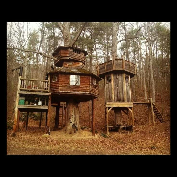 14 best tree stands images on pinterest hunting stands for Homemade hunting shack