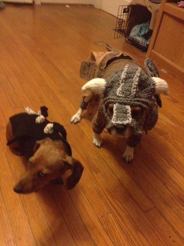 These are crocheted Skyrim outfits for dachshunds.  It doesn't get any geekier than this. Awesome!