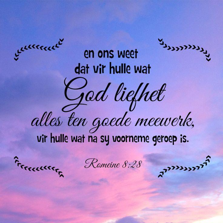 En ons weet dat vir hulle wat God liefhet, alles ten goede meewerk, vir hulle wat na sy voorneme geroep is. Romeine 8:28 #afrikaans #bybelvers