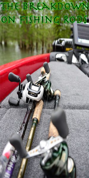 Get the breakdown on the different types of fishing rods  | Buyers