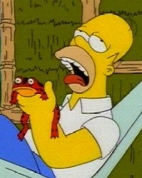 #Homer #Simpson licks a #frog #drugs #High #SUPERHIGH