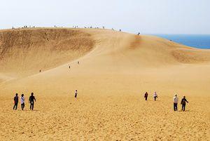 The Tottori Sand Dunes are unique sand dunes located near Tottori City in Tottori Prefecture, Honshū, Japan.