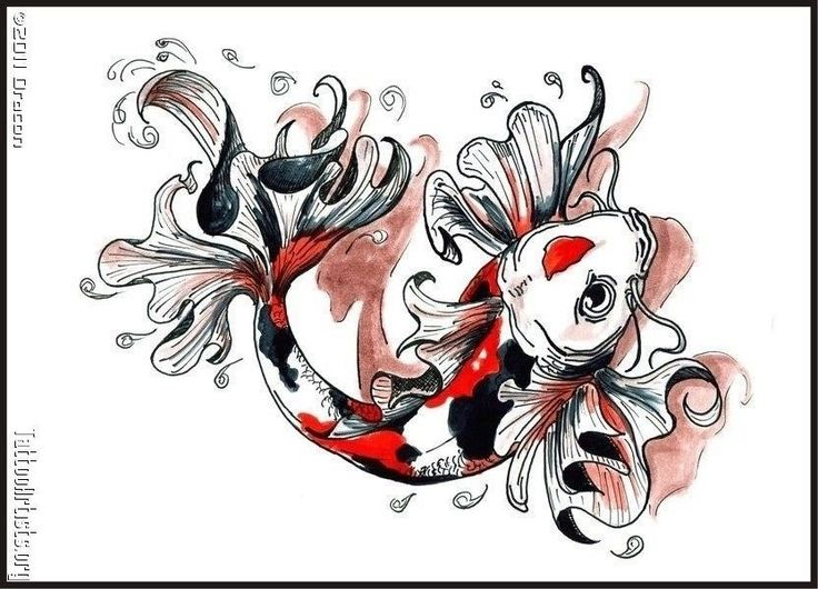 405 Best Pisces Coy Fish Tattoo Images On Pinterest Coy