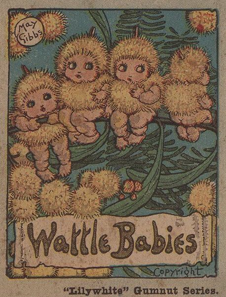 Wattle Babies. I'm putting some of these cute little beings into my Pixie board because they seem to have a place there. The gumnut Babies especially, because of their gumnut acorn-like caps, remind me of playing around gum trees in my childhood, when I called the cups 'pixie hats'.