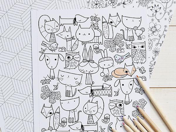 Mejores 10 imágenes de Coloring colorado :) en Pinterest | Libros ...