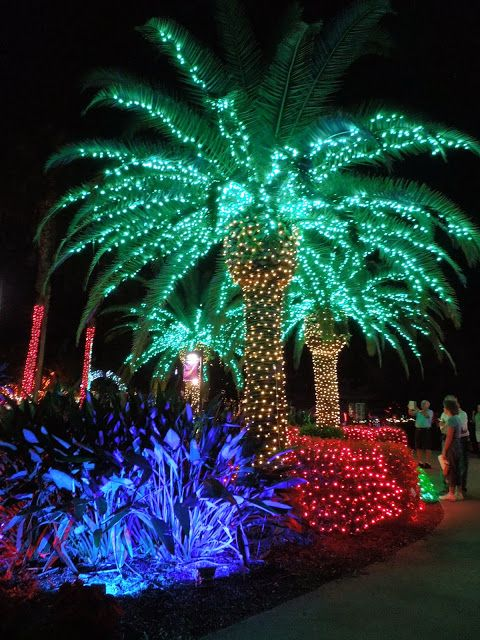 100 best images about Christmas Palmtree on Pinterest  Christmas