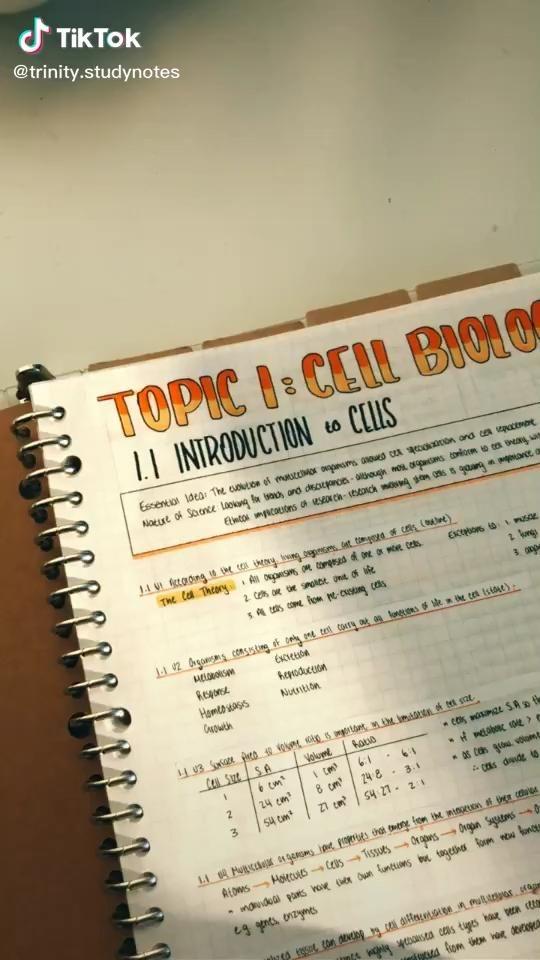 study notes tik tok video high school organization school organization notes study