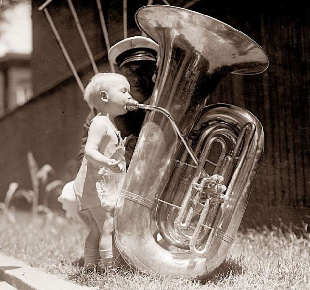 Смешные картинки с муз инструментами